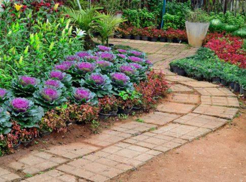 Landscaping Garden