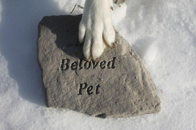 memorial-pet-plaque